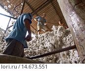 Купить «People gather, produce, Algodoeira Alliance, Leme, Sao Paulo, Brazil.», фото № 14673551, снято 10 мая 2005 г. (c) age Fotostock / Фотобанк Лори