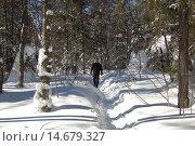 Купить «Зимний лес, тропа, солнечный зимний день, снежный сугроб на березе. Природный парк Таганай», фото № 14679327, снято 10 марта 2013 г. (c) Юрий Карачев / Фотобанк Лори