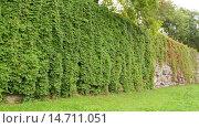 Купить «Teutonic castle in Sztum, Poland», видеоролик № 14711051, снято 15 октября 2015 г. (c) BestPhotoStudio / Фотобанк Лори
