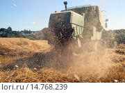 Купить «corn harvester on oat field, Germany», фото № 14768239, снято 1 августа 2013 г. (c) age Fotostock / Фотобанк Лори