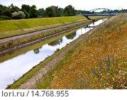Купить «wild flower meadow at the Emscher, Germany, North Rhine-Westphalia, Ruhr Area, Essen», фото № 14768955, снято 23 января 2018 г. (c) age Fotostock / Фотобанк Лори