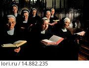 Купить «benedictines cloistered nuns.monastery of palacios of benaver. burgos.», фото № 14882235, снято 23 мая 2018 г. (c) age Fotostock / Фотобанк Лори