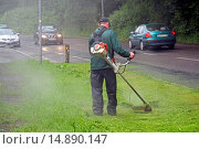 Купить «city gardener with strimmer at the roadside, Germany», фото № 14890147, снято 21 ноября 2018 г. (c) age Fotostock / Фотобанк Лори