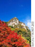 Купить «Valley, Soja, Okayama, Japan», фото № 14907203, снято 21 августа 2018 г. (c) age Fotostock / Фотобанк Лори