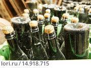 Купить «wine and champagne production ageing at winery factory», фото № 14918715, снято 22 сентября 2015 г. (c) Дмитрий Калиновский / Фотобанк Лори