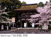 Купить «Mii-dera Temple, Yamato, cherry, Otsu, Shiga, Kinki, Japan», фото № 14936159, снято 20 сентября 2018 г. (c) age Fotostock / Фотобанк Лори