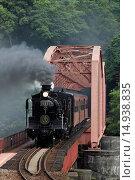 Купить «Hitotsbashihari in SL Hitoyoshi title, steam locomotive, Kuma river, Yasshiro, Kumamoto, Kyushu, Japan», фото № 14938835, снято 20 сентября 2018 г. (c) age Fotostock / Фотобанк Лори