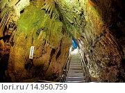 Купить «Ikura-do Cave», фото № 14950759, снято 22 февраля 2019 г. (c) age Fotostock / Фотобанк Лори