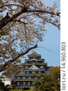Купить «Okayama Castle, Okayama, Sanyo, Japan», фото № 14960803, снято 21 августа 2018 г. (c) age Fotostock / Фотобанк Лори