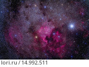 The North America Nebula (NGC 7000) and Pelican Nebula (IC 5070) area near Deneb in Cygnus. Taken from home July 24, 2012 with Canon 5D MkII camera at... Стоковое фото, фотограф Alan Dyer / age Fotostock / Фотобанк Лори