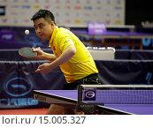 Купить «Tischtennis German Open 2014 vom 26.03. - 30.03.2014 in Magdeburg», фото № 15005327, снято 24 апреля 2019 г. (c) age Fotostock / Фотобанк Лори
