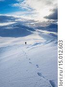 Купить «Walker on snowy, winter walk descending Creag Pitridh, near Laggan; Scotland», фото № 15012603, снято 16 февраля 2019 г. (c) age Fotostock / Фотобанк Лори