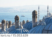 Купить «Стамбул, вид на пролив Босфор», фото № 15053639, снято 11 января 2015 г. (c) Юлия Бабкина / Фотобанк Лори