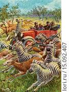 Купить «An African safari in the 1920´s after the illustration by Carl Robert Arthur Thiele. From Will Hartman der Diamantenfucher, published 1934.», фото № 15092407, снято 8 декабря 2019 г. (c) age Fotostock / Фотобанк Лори