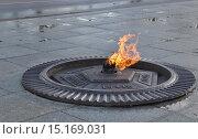 Купить «Вечный огонь», фото № 15169031, снято 1 декабря 2015 г. (c) Наталья Лабуз / Фотобанк Лори