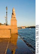 Купить «Сфинкс на Университетской набережной. Санкт-Петербург.», эксклюзивное фото № 15186135, снято 8 декабря 2015 г. (c) Александр Щепин / Фотобанк Лори