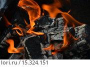 Пламя. Стоковое фото, фотограф Калинина Наталья / Фотобанк Лори