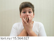 Купить «Surprised boy closes the mouth with hands», фото № 15564027, снято 29 ноября 2015 г. (c) Володина Ольга / Фотобанк Лори