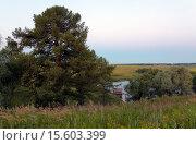 Купить «Летний пейзаж», фото № 15603399, снято 11 июля 2015 г. (c) Валерий Боярский / Фотобанк Лори