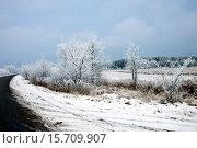 Обочина зимней дороги. Стоковое фото, фотограф Левончук Юрий / Фотобанк Лори