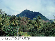 Landscape covered with dense tropical rainforest. Стоковое фото, фотограф © Eye Ubiquitous / age Fotostock / Фотобанк Лори