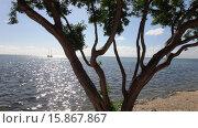 Остров Исламорада (2015 год). Стоковое фото, фотограф Валентина Пресникова / Фотобанк Лори