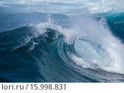 Купить «Большая океанская волна», фото № 15998831, снято 11 декабря 2015 г. (c) Tamara Kulikova / Фотобанк Лори