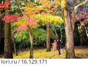 Купить «The garden, Daigo-ji Temple , Kyoto City , Kansai, Japan.», фото № 16129171, снято 15 июля 2020 г. (c) age Fotostock / Фотобанк Лори