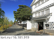 Купить «Japan, Sanyo Region, Okayama Prefecture, Kurashiki-shi, View of street in town.», фото № 16181919, снято 19 марта 2019 г. (c) age Fotostock / Фотобанк Лори