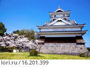 Купить «Japan, Tohoku Region, Yamagata Prefecture, Kaminoyama, Okayama Castle.», фото № 16201399, снято 19 февраля 2019 г. (c) age Fotostock / Фотобанк Лори