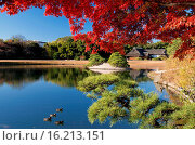 Купить «Japan, Sanyo Region, Okayama Prefecture, Okayama, View of koraku-en garden.», фото № 16213151, снято 23 октября 2018 г. (c) age Fotostock / Фотобанк Лори