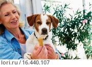 Woman playing with her dog. Стоковое фото, фотограф easyFotostock / easy Fotostock / Фотобанк Лори