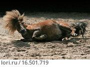 Sandbad. Стоковое фото, фотограф Viola Böhme / easy Fotostock / Фотобанк Лори