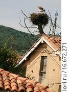 Купить «Nest with storks in the mountains of Palencia ,Castile Leon, Spain», фото № 16672271, снято 21 марта 2019 г. (c) easy Fotostock / Фотобанк Лори