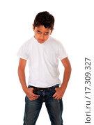 Купить «Raging Boy», фото № 17309327, снято 4 августа 2020 г. (c) easy Fotostock / Фотобанк Лори