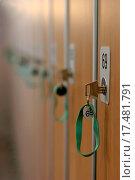 Купить «locker 69», фото № 17481791, снято 20 февраля 2019 г. (c) easy Fotostock / Фотобанк Лори
