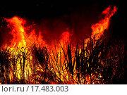 Купить «Big fire on the farmland», фото № 17483003, снято 17 августа 2019 г. (c) easy Fotostock / Фотобанк Лори