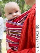 Купить «little cute girl six month old sitting in sling», фото № 17627195, снято 15 ноября 2019 г. (c) easy Fotostock / Фотобанк Лори