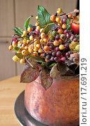 Interna plastic floral copper potted decoration in. Стоковое фото, фотограф Zoonar/Alberto Rigam / easy Fotostock / Фотобанк Лори