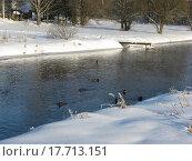 Зимние берега. Стоковое фото, фотограф Андрей Усачев / Фотобанк Лори