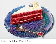 Купить «Кусок черничного торта на тарелке крупно», эксклюзивное фото № 17714463, снято 27 декабря 2015 г. (c) Яна Королёва / Фотобанк Лори