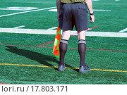 Купить «Soccer Official», фото № 17803171, снято 3 апреля 2020 г. (c) easy Fotostock / Фотобанк Лори
