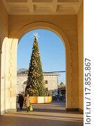 Купить «Новогодняя ёлка возле станции метро «Парк культуры»», фото № 17855867, снято 28 декабря 2015 г. (c) Павел Москаленко / Фотобанк Лори