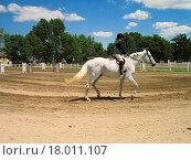 Купить «Horse & Rider», фото № 18011107, снято 23 марта 2019 г. (c) easy Fotostock / Фотобанк Лори