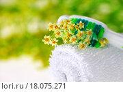 Купить «Toothbrush with tiny flowers», фото № 18075271, снято 24 января 2019 г. (c) easy Fotostock / Фотобанк Лори