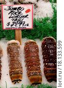 Купить «Lobster tails», фото № 18133599, снято 18 ноября 2017 г. (c) easy Fotostock / Фотобанк Лори