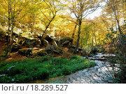 France, Les Vaux de Cernay in Chevreuse valley. Стоковое фото, фотограф Hallé / easy Fotostock / Фотобанк Лори