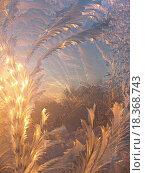 Купить «ice pattern and sunlight», фото № 18368743, снято 6 июля 2020 г. (c) easy Fotostock / Фотобанк Лори