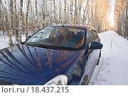 Берёзы отражаются в автомобиле. Стоковое фото, фотограф Алексей Наумов / Фотобанк Лори