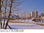 Городской парк зимой. Стоковое фото, фотограф Елена Чегодаева / Фотобанк Лори